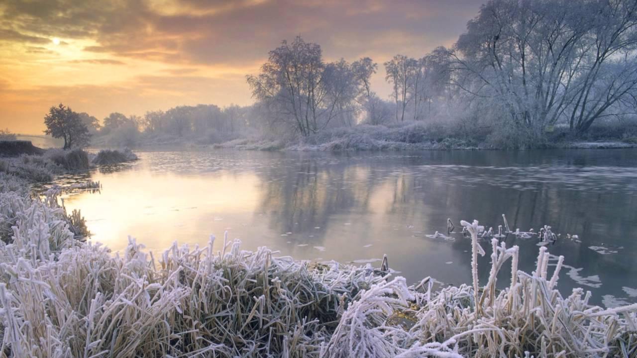 Winteria by Jonathan Ostlund