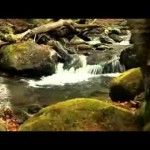 Rob Costlow – The River