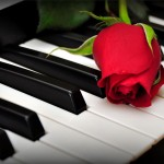 red roses thumbnail