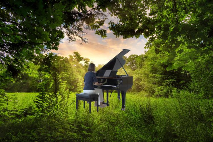 Hauke Kranz - Die Tastenflüsterin Open Skies: Summer in the woods